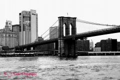 Bridge in BW